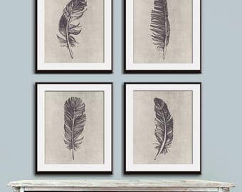 Birds of a Feather (4A) Set of 4 - Art Prints (Featured in Charcoal on Stone Wash) Feather Wall Art