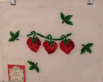 Dritz Luxury Needlepoint Canvas Strawberries