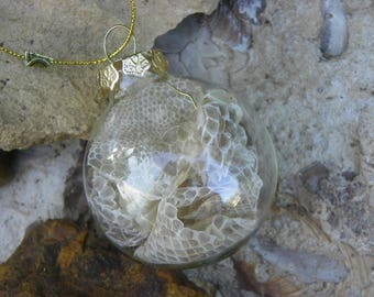 Cruelty Free Real Copperhead Skin Shed Glass Ornament. No. 2