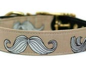 Mustaches on Tan Dog Collar