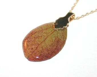 Pretty leaf in gold plated pendant and chain (8)