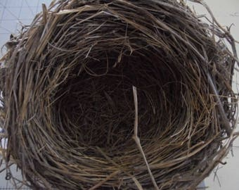 Real Found bird nest  Missouri  Science Teaching aid Wreath decoration Photo prop Wedding Baby shower Centerpiece decor Wildlife L6