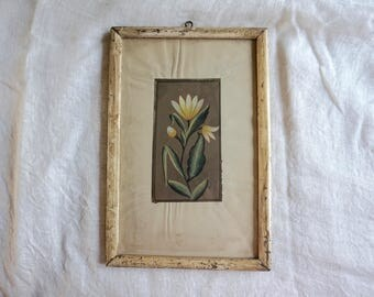Vintage Botanical Painting White Flower India Style