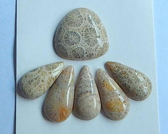 SALE,6 PCS Indonesian Fossil Coral Gemstone Cabochons,3.5g(Cb034)
