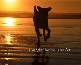 Dog Running at Sunset Beach Card Handmade Photo Greeting Card Landscape Sun Setting  over Copalis Beach