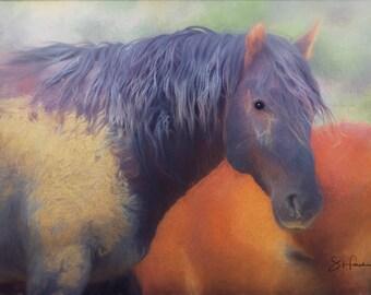 Chief - Fine Art Wild Horse Painting - Wild Mustang of Sand Wash Basin, Wild Horse Painting, sand wash basin wild horses, Colorado stallion