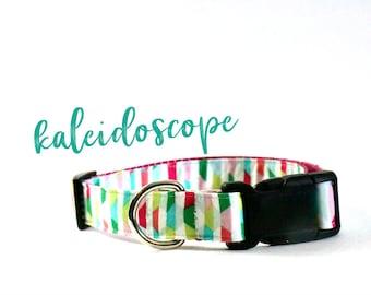 Dog Collar • kaleidoscope