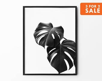 Monstera Print, Tropical Leaf Art, Natural Wall Arts, Nature Poster, Black and White, Inspirational, Monstera Wall Decor,