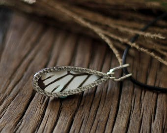 Real butterfly necklace Butterfly wing jewelry Taxidermy jewelry Gift for women Bug jewelry Preserved specimen Butterfly taxidermy