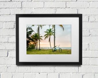 Florida Keys Marathon Key West Sunset - Bike Against Palm Trees at Sunset  Pastel