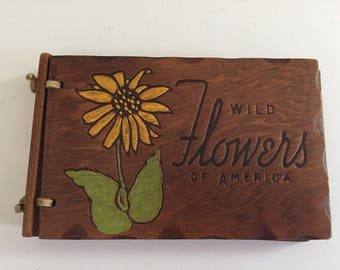 Vintage Wood Covered Wild Flowers of America 1932