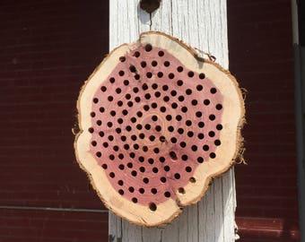 Bee House; Cedar Tree Cookie Bee House