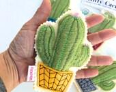 Catnip Cactus- Organic Catnip Cat Toy