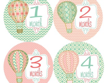 Paris Sky Baby Monthly Stickers
