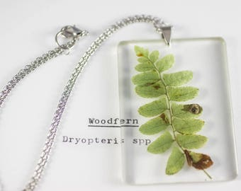 Christmas Fern (Polystichum acrostichoides) Botanical Jewelry, Herbarium Pendant, Gifts for Naturalists, Forest Jewelry, Woodland Gifts