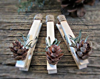 christmas wedding favors place card holders clothespin magnets photo holder picture hanger