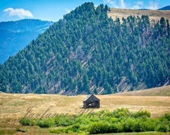 A Rustic Cabin