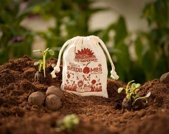 "Seed Bombs ""Bee's Feast"", 10 walnut sized & handmade seed balls"