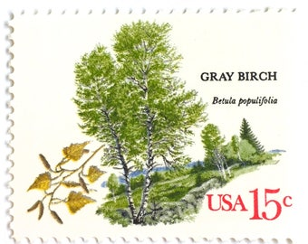 10 Unused Birch Tree Stamps // Vintage Grey Birch Forest Postage Stamps For Mailing