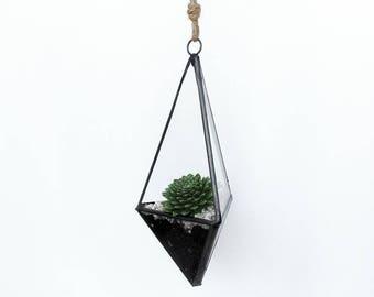 Hanging Glass Geo Terrarium Kit
