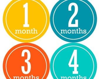 Baby Month Stickers, Baby Boy Gift, Milestone Stickers, Monthly Sticker, Monthly Baby Boy Stickers, Baby Month Milestone Stickers 166