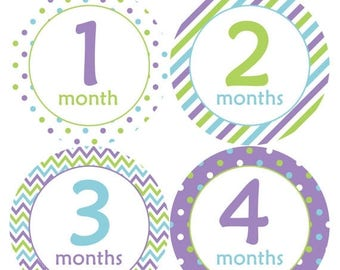 Baby Month Stickers Baby Monthly Stickers Girl Monthly Bodysuit Stickers Baby Shower Gift Photo Prop Baby Milestone Sticker 119