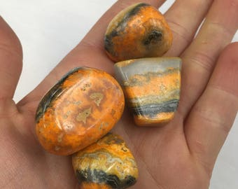 One (1) bumble bee jasper from lot shown 17rf1114G