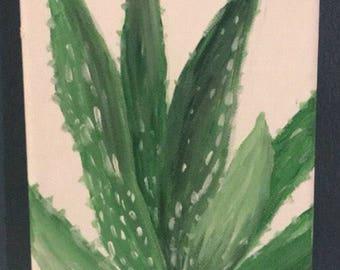 Aloe Vera original painting