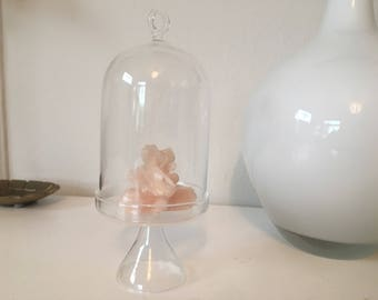 Vintage glass cloche jar glass display jar petite glass jar bell jar display curiosities