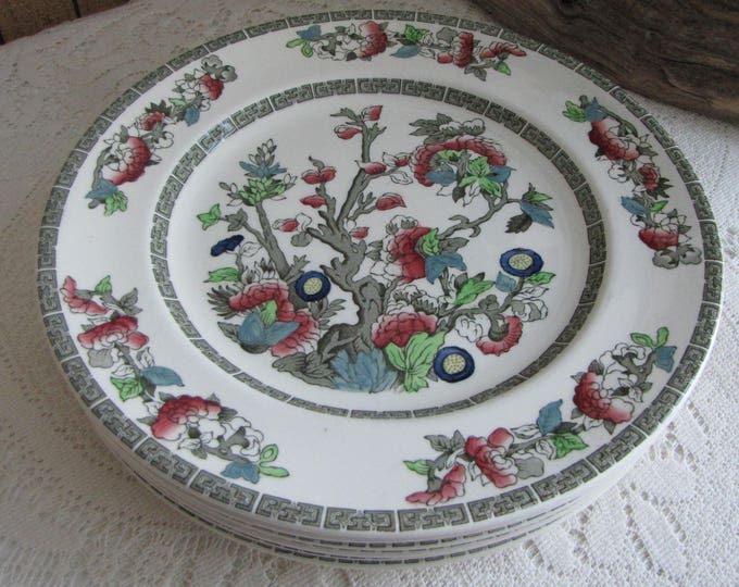 Indian Tree Dinner Plates Johnson Bros. Vintage Dinnerware and Replacements 1979-1982 Greek Key Set of Six (6)