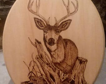 Mule Deer Woodburning