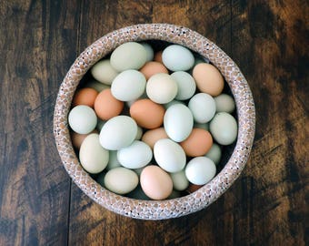 Hand Blow Free Range Chicken Eggs | Light Mix - Blue, Green, Brown | Primitive, Natural Rustic Farmhouse, Cottage Chic Décor