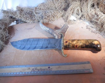 Damascus Bowie Knife with Buckeye Burl wood handles