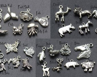 ADD ON ONLY. Charms Set 1 -  Add a charm. Personalise Your  Piece of Jewelry. Create your own custom Design | purchase as many as you like|