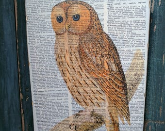 Owl Wood Art