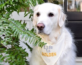 Life is Golden Seersucker Bandana || Yellow Preppy Dog Pet Scarf || Puppy Gift by Three Spoiled Dogs