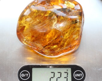 Baltic Amber Large Unique Amber With Insect Inclusion 223g of amber with Full size ANT / A lifetime Collectible