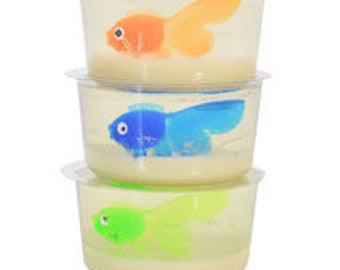 Fish in a Dish - Soap Making Starter Kit