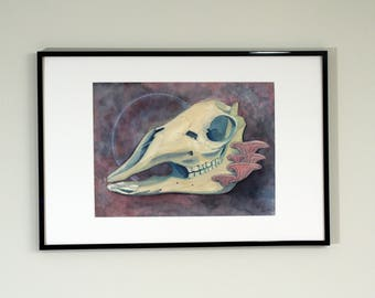 alpaca skull watercolor mixed media framed painting