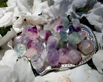 Juicy Fluorite Tumbled Stones - small - Harmonize Spiritual Energy, Purifies, Reorganizes, Stabilize the Aura.