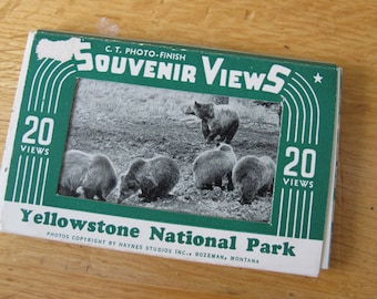 Miniature Souvenir Views Yellowstone National Park / 20 views Yellowstone photos / Haynes Studios
