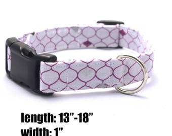 Medium Purple and White Scale Collar