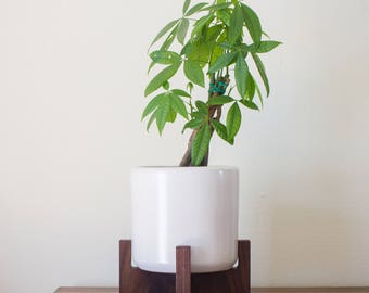 FREE SHIPPING: Tabletop Cylinder Mid-Century Modern Planter, Plant Stand with 6.5'' Ceramic - Walnut