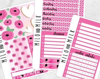 Pink Floral Kit | Bullet Journal + Planner Stickers