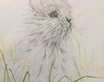 Bunny - ORIGINAL Pencil Drawing - Nursery Art, Nursery Decor, Animal Art, Baby Animals, Gift, Original Artwork, Wall Art, Home Decor