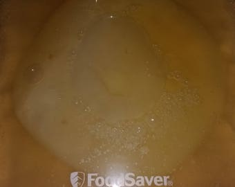 Organic Kombucha Mother SCOBY with 1 cup starter tea
