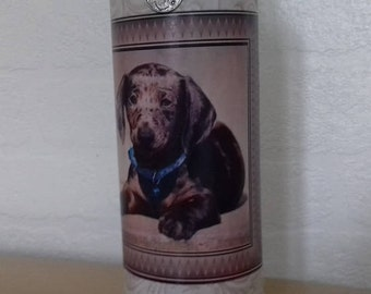 Dachshund Decorated Bottle