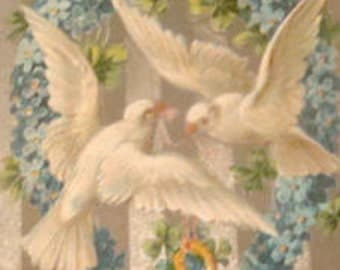 Pritty Vintage Postcard (Doves)