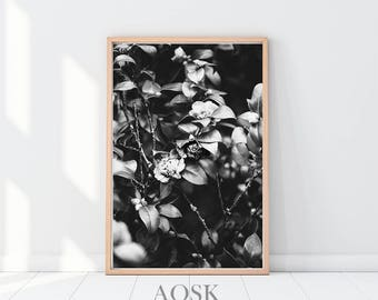 Plant Leaf Art Print, Romantic Gifts, Above Bed Wall Art, Dark Floral Photography, Black and White Art Prints, Floral Home Decor, Floral Art