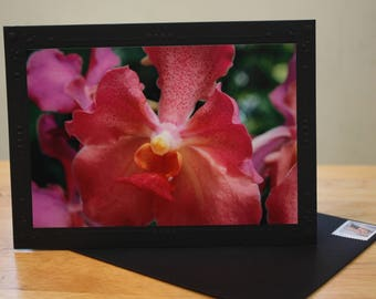 Orchid II Blank Photo Mount Greeting Card